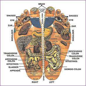 A brief history of reflexology